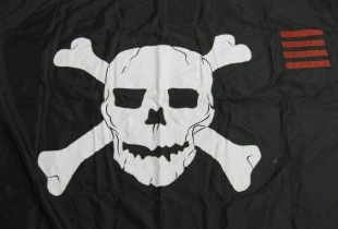 Not so Jolly Roger